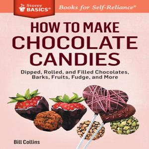 how-to-make-chocolate-candy-at-home-2